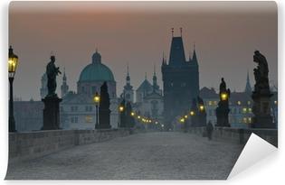 Vinyl Fotobehang Charles Bridge, Prague