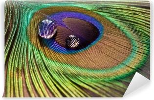 Vinyl Fotobehang Druppels op veren pauw
