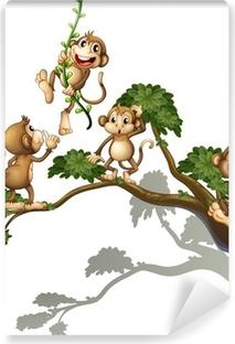 Vinyl Fotobehang Een boom met vier apen