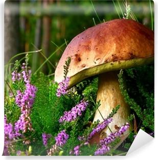 Vinyl Fotobehang Eetbare paddestoel - eekhoorntjesbrood met bloeiende heide