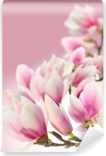 Vinyl Fotobehang Foto van magnolia