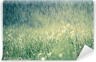 Vinyl Fotobehang Frühlingsregen auf Wiese mit leichtem Farbeffekt