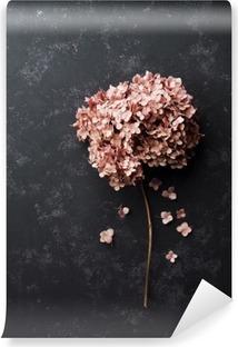 Vinyl Fotobehang Gedroogde bloemen hortensia op zwart vintage tafel bovenaanzicht. Plat styling.