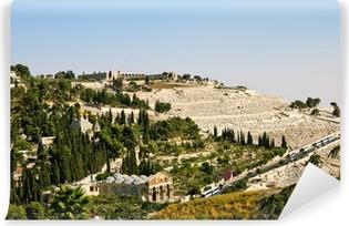 Vinyl Fotobehang Gethsemane, en de kerk van alle naties in Jeruzalem