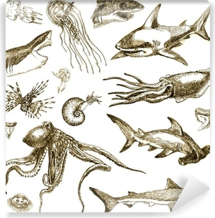 Vinyl Fotobehang Hand-drawn collectie. Het mariene leven - zeemonsters en haaien.