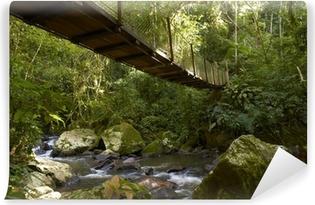 Vinyl Fotobehang Hangbrug in het regenwoud