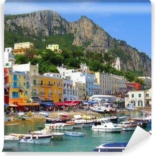 Vinyl Fotobehang Ile de Capri, Italië, Europa