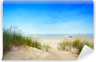 Vinyl Fotobehang Kalm strand met duinen en groen gras. Rustige oceaan