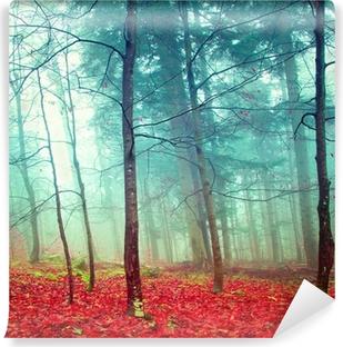 Vinyl Fotobehang Kleurrijke mystieke herfst bomen