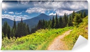 Vinyl Fotobehang Kleurrijke zomer landschap in de bergen.