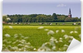 Vinyl Fotobehang Landschap met kerk en koeien