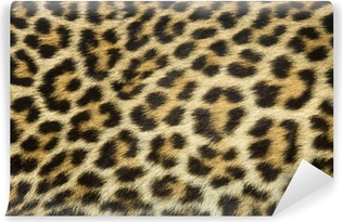 Vinyl Fotobehang Luipaard bont textuur (echte)