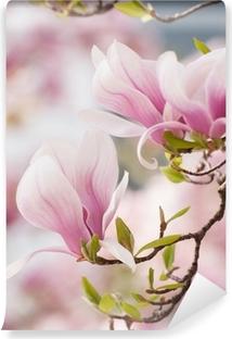 Vinyl Fotobehang Magnolia bloem in de lente