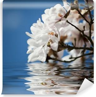 Vinyl Fotobehang Magnolia bloemen in het water