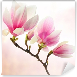 Vinyl Fotobehang Magnolia decoratie