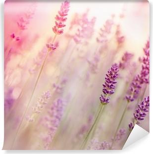 Vinyl Fotobehang Mooie lavendel in de bloementuin