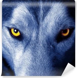 Vinyl Fotobehang Mooie ogen van een wilde wolf.