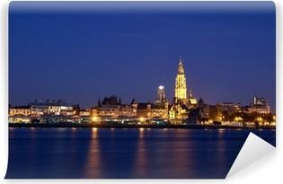 Vinyl Fotobehang Nacht uitzicht over de stad Antwerpen