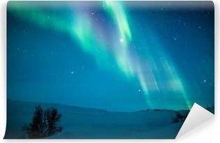Vinyl Fotobehang Noorderlicht (Aurora borealis) boven sneeuw