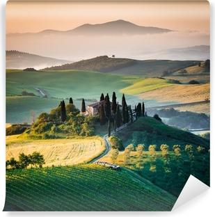 Vinyl Fotobehang Ochtend in Toscane, landschap en de heuvels