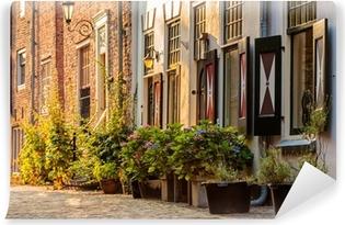 Vinyl Fotobehang Oude huizen in het historische centrum van de Nederlandse stad Amersfoort