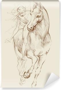 Vinyl Fotobehang Paard en ruiter. Gebaseerd op tekening van Leonardo da Vinci