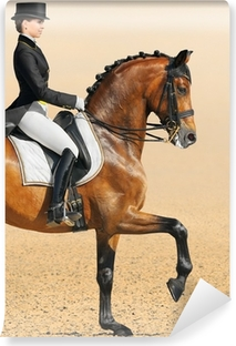Vinyl Fotobehang Paardensport - dressuur, close-up