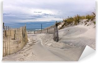 Vinyl Fotobehang Pad door zandduinen op een strand op Long Island, New York