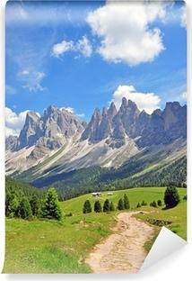 Vinyl Fotobehang Pieken van de berg in de Alpen