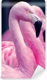 Vinyl Fotobehang Pink Flamingos