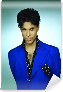 Vinyl Fotobehang Prince