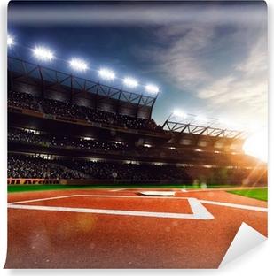Vinyl Fotobehang Professioneel honkbal Grand Arena in zonlicht