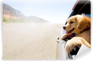 Vinyl Fotobehang Puppy kijkt uit het raam van een auto