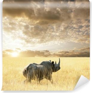 Vinyl Fotobehang Rhino