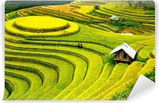 Vinyl Fotobehang Rijstvelden op terrassen in Vietnam