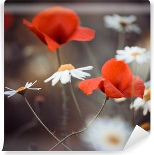 Vinyl Fotobehang Rode papaver bloemen en wilde madeliefjes