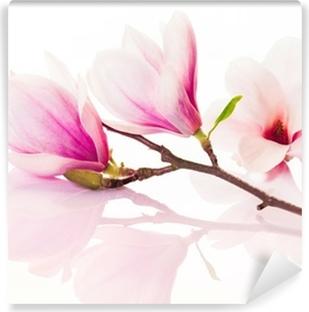 Vinyl Fotobehang Roze lente bloemen met reflectie