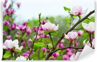Vinyl Fotobehang Roze Magnolia
