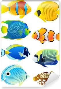 Vinyl Fotobehang Set van tropische vissen