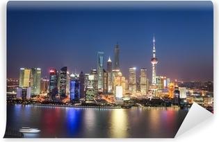 Vinyl Fotobehang Shanghai Lujiazui night view
