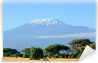Vinyl Fotobehang Sneeuw op de top van de Kilimanjaro