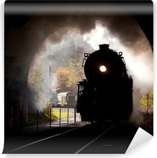 Vinyl Fotobehang Stoomlocomotief komt tunnel
