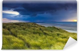 Vinyl Fotobehang Stormclouds over de duinen van Zeeland in Nederland