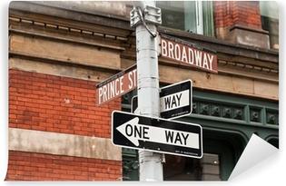 Vinyl Fotobehang Straatnaamborden en verkeerslichten in New York, USA