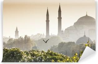 Vinyl Fotobehang Sultanahmet Camii / Blue Mosque, Istanbul, Turkey