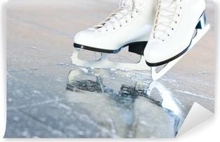 Vinyl Fotobehang Tilted natuurlijke versie, schaatsen met reflectie