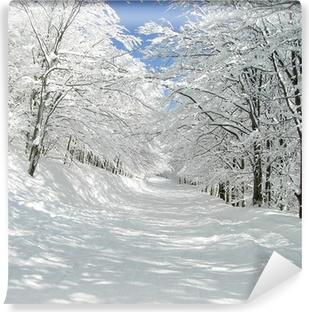 Vinyl Fotobehang Traumhafte winterallee