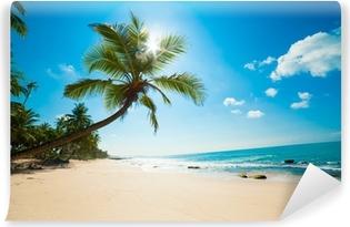 Vinyl Fotobehang Tropisch strand in de zon