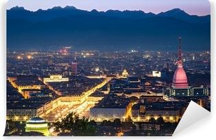 Vinyl Fotobehang Turijn (Torino), panorama 's nachts