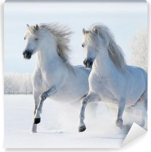 Vinyl Fotobehang Twee witte paarden in galop in de sneeuw